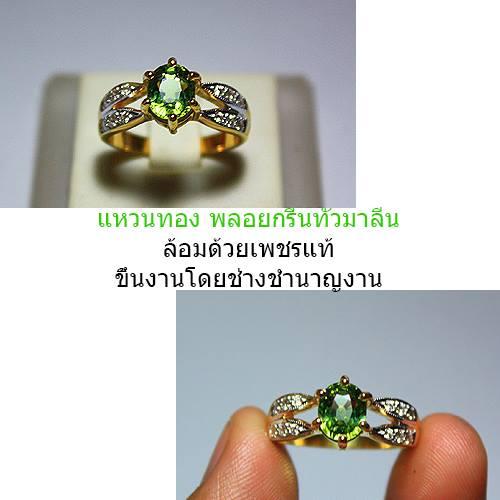 1441534_592792704119795_903775135_n_-_Copy.jpg
